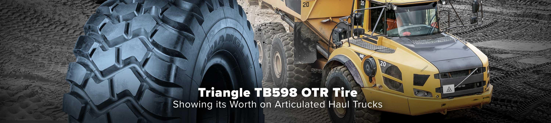 TB598